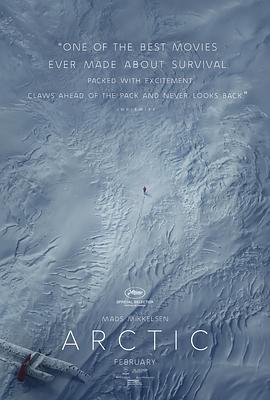北极 Arctic (2018)