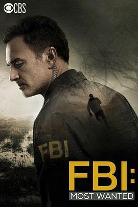 联邦调查局:通緝要犯部 FBI: Most Wanted (2020)